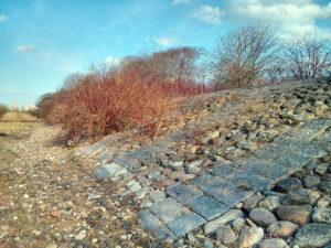 Kanonersky island banks enforced with granite blocks